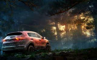 Все тайники в горах Уайттейл, регион Иакова — Секреты — Far Cry 5