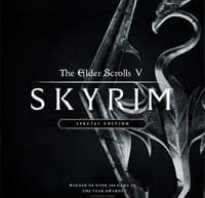 Трансляции The Elder Scrolls V: Skyrim / Elder Scrolls 5 / The Elder Scrolls V: Skyrim Special Edition