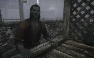 Первое дополнение для глобальной модификации The Elder Scrolls: Skyrim