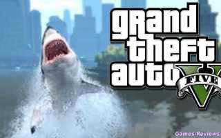 ГТА 5 как охотиться на акул