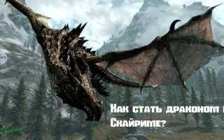 Как стать драконом в Скайриме? — гайды по Skyrim