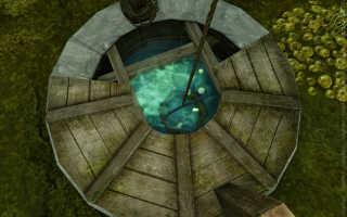 Как получить говорящую лягушку в Archeage