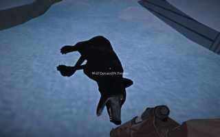 The Long Dark как убить волка или отбиться от него?