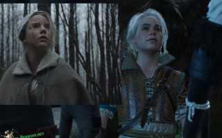 12 часть: сходства знаменитостей и Персонажей игры Ведьмак3