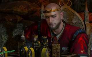 Король Радовид V Свирепый — персонаж игры Ведьмак 3