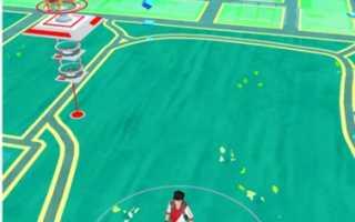 Что означают листья в игре Покемон Го?
