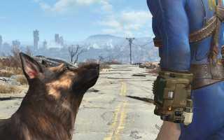 Особенности предварительного заказа Fallout 4