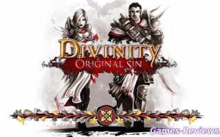 Обзор игры Divinity: Original Sin — сюжет, персонажи, характер
