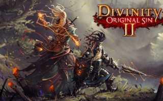 Гайды по Divinity: Original Sin 2 — прохождение квестов и полезные советы