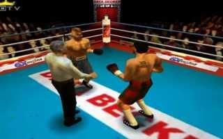 Игры про бокс на ПК — список