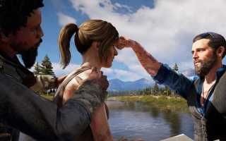 Все напарники в Far Cry 5