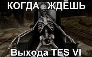 The Elder Scrolls 6 раскрыто, чем отличается от Skyrim