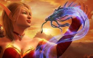 Blizzard продала 3,3 млн копий игры World of Warcraft Legion