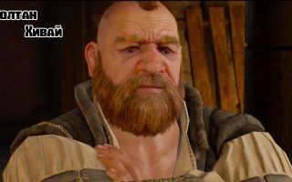 Золтан Хивай — персонаж из Ведьмак 3