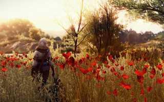 Разработчики The Witcher 3: Wild Hunt считают, что дополнения к играм нужно выпускать бесплатно