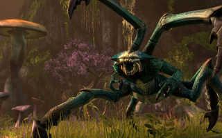 Обзоры The Elder Scrolls: Online / The Elder Scrolls Online: Tamriel Unlimited / TES: Online