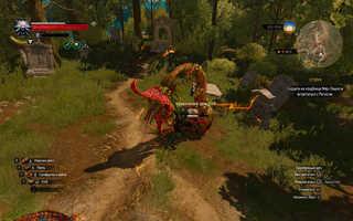 Прохождение квеста «Отзвук» — Ведьмак 3 DLC Кровь и Вино