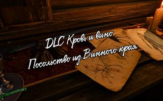 Посольство из Винного Края — прохождение квеста в Ведьмак 3