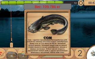 рыбалку на андроид бесплатно