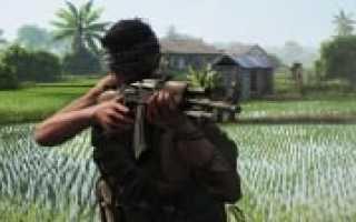 Разработчики Rising Storm 2: Vietnam убрали дерево по просьбе одного игрока